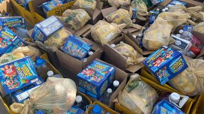 Photos: Orange County groups host food giveaway at Tangelo Park