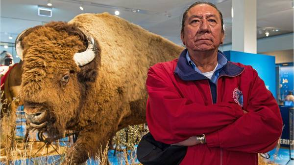 DNA from Sitting Bull's lock of hair confirms great-grandson's ancestry claim