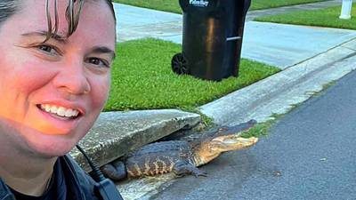 Say Cheese: Palm Bay Officer all smiles in selfie with alligator