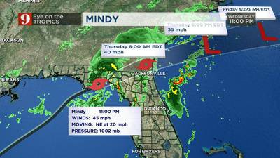 Tropical Storm Mindy makes landfall in Florida, downpours expected early Friday