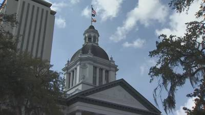 Video: 'Florida Heartbeat Act': State rep. files Texas-style abortion bill