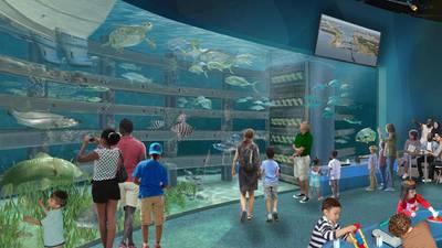 Brevard Zoo to build new world-class aquarium