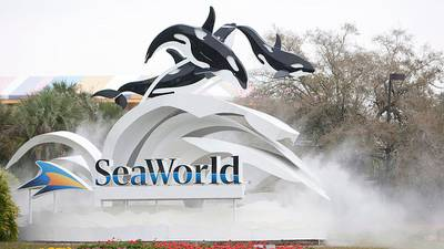 SeaWorld offering Florida teachers free admission for a year
